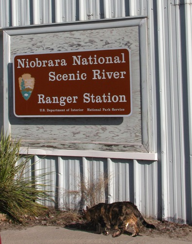 Crane Quest, Day 2 -- Niobrara Explorations in Valentine NE
