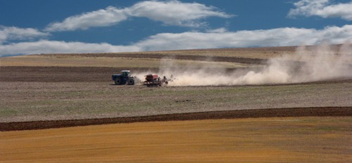 Agriculture Happening in the Madison River Valley MT