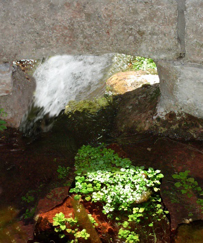 Cascade Spring Emerges from Cistern