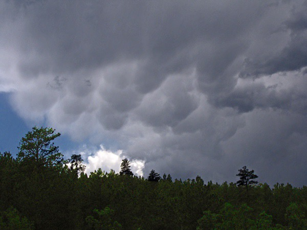 Mammatus Clouds over Black Hills National Forest SD