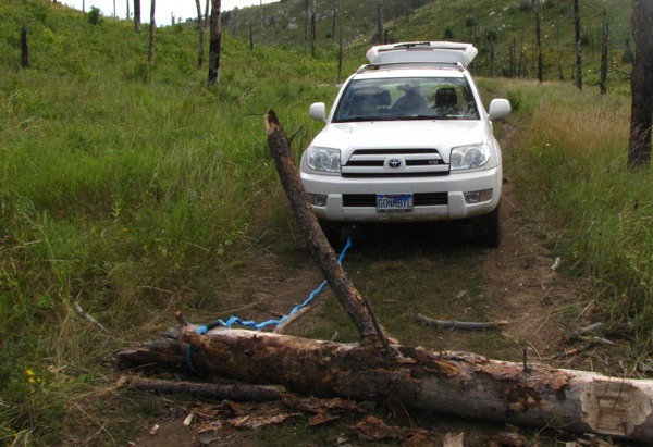 Road Block Log on Black Hills National Forest Road 718
