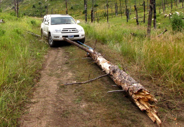Road Block Log Swings Open on Black Hills National Forest Road 718