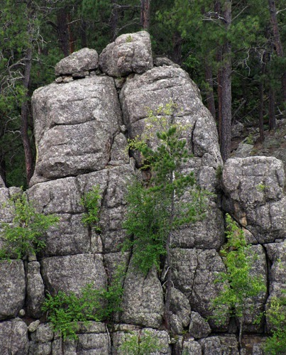 Canyon-Side Leaning Stone Lovers