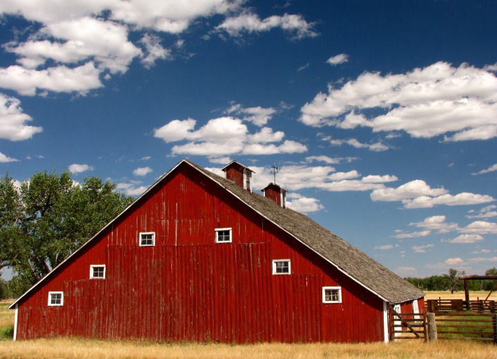 Red Barn In the Cottonwood Bottoms