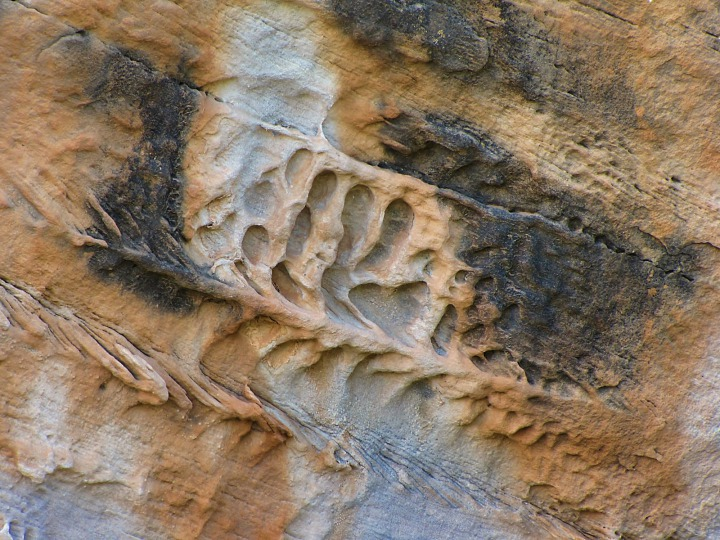 Stone Flows In Red Canyon