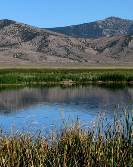Ruby Lake National Wildlife Refuge NV