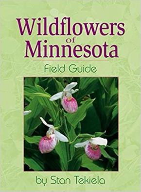 Minnesota wildflowers